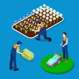 Plantas del ajuste del jardinero Gente isométrica libre illustration