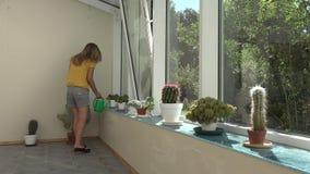 Plantas del cactus del agua de la muchacha con la regadera en invernadero 4K metrajes
