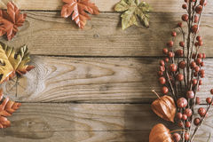 Plantas del otoño en fondo de madera Fotografía de archivo