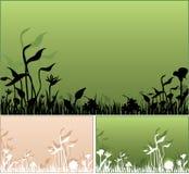 Plantas del resorte libre illustration