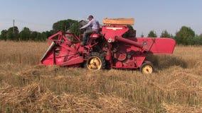 Plantas del trigo de la cosecha del trabajador de granja con la máquina segadora roja almacen de metraje de vídeo