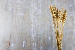 Plantas del trigo en fondo de madera Fotografía de archivo libre de regalías