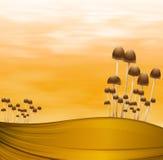 Plantas do cogumelo Imagem de Stock Royalty Free