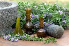 Plantas dos alecrins e óleo de alecrins Imagem de Stock