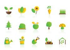 Plantas e ícones diferentes da jardinagem Foto de Stock Royalty Free