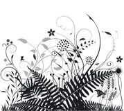 Plantas e ferns ilustração stock