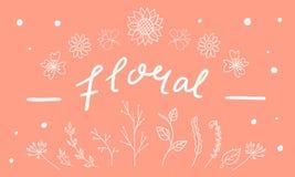 Plantas e flores decorativas tiradas mão Fotografia de Stock