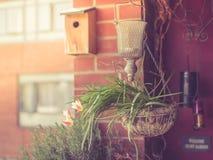 Plantas e flores no balcão fotos de stock royalty free