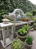 Plantas e hierbas en un banco Foto de archivo