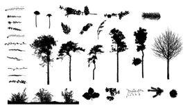 Plantas e silhuetas das árvores Imagens de Stock Royalty Free
