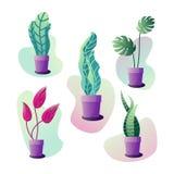 Plantas em pasta ajustadas ilustração do vetor