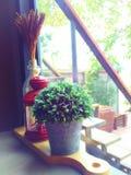 Plantas em pasta artificiais, lâmpadas, flores secadas em um vaso, colocado em uma placa de corte de madeira Um canto do café com fotos de stock royalty free