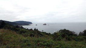 Plantas en el fondo de Cliff Top Blowing With Ocean y de la costa almacen de video