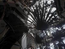 Plantas en hotel abandonado Imagen de archivo