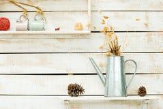 Plantas en la pared de madera áspera blanca Imagen de archivo libre de regalías