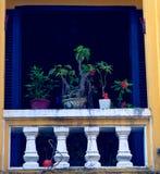 Plantas en la ventana colorida, Hoi An, Vietnam foto de archivo