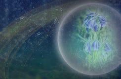 Plantas estrangeiras flores extraterrestres azuis de um fundo cósmico da natureza da planta Vida em outros planetas a reflexão do imagem de stock