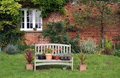 Plantas & flores em uns potenciômetros no banco de madeira Imagem de Stock Royalty Free