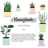 Plantas interiores de la decoración, sistema stock de ilustración