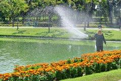 Plantas irreconhecíveis de Watering Colorful Flowering do jardineiro pelo lago imagens de stock