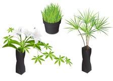 Plantas isométricas no vaso e no potenciômetro modernos ilustração stock