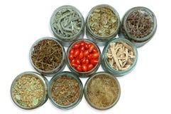 Plantas medicinales secadas en tarros Imagen de archivo