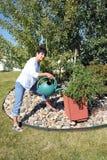 Plantas molhando da beleza fêmea fotografia de stock royalty free