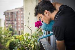 Plantas molhando de homem novo no balcão do apartamento fotografia de stock