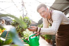 Plantas molhando do jardineiro masculino considerável com lata da água imagens de stock