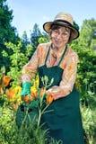 Plantas molhando estando da mulher com um sorriso feliz foto de stock royalty free