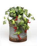 Plantas na cubeta Fotos de Stock Royalty Free