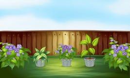 Plantas no quintal ilustração do vetor