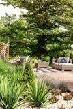Plantas no quintal ensolarado imagens de stock royalty free