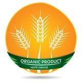 Plantas orgânicas, etiqueta do trigo Imagens de Stock