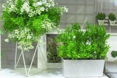 Plantas ornamentales artificiales con las pequeñas flores blancas para la decoración del hogar y del jardín Detalles y elementos  imagenes de archivo