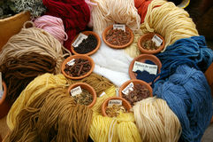 Plantas para los tintes de lana. Fotos de archivo