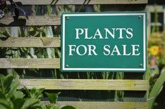 Plantas para o sinal da venda Fotos de Stock