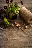 Plantas para a plantação e os acessórios do jardim Fotografia de Stock Royalty Free