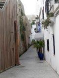 Plantas pequenas da palma em uns potenciômetros azuis na rua secundária quieta de Tarifa foto de stock royalty free