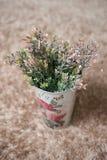Plantas plásticas en el compartimiento Fotos de archivo libres de regalías