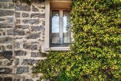 Plantas por uma janela rústica em uma parede de tijolo Foto de Stock Royalty Free