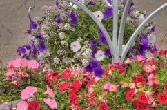 Plantas que crecen en un centro de jardinería en Minnesota fotos de archivo