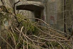 Plantas que cubren la entrada del edificio abandonado Fotos de archivo