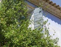 Plantas que suben en una casa con una ventana abierta Fotografía de archivo