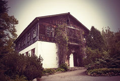 Plantas retorcidas casa abandonadas Foto de Stock
