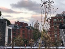 Plantas secadas en invierno fotografía de archivo