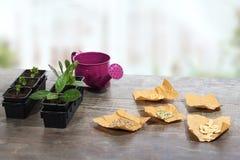 Plantas, semillas y regadera Fotos de archivo libres de regalías