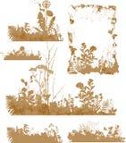 Plantas, silueta libre illustration