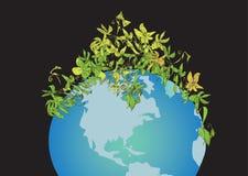 Plantas sobre un globo Fotos de archivo libres de regalías