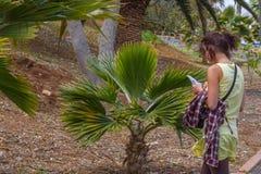 Plantas studing de la mujer en jardín botánico en parte tropical Imagen de archivo